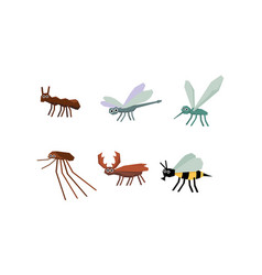 collection geometric insects set mosquito vector image