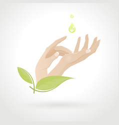 Female hand care with herbs vector