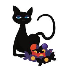 Halloween black cat with candies vector