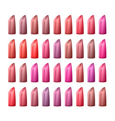 lipstick palette different colors of red vector image