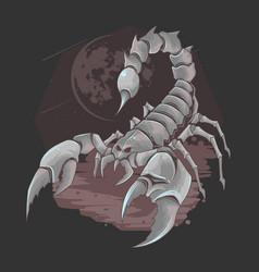 Scorpion bug horoscope zodiac element vector