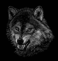angry wolf monochrome portrait a wolfs head vector image