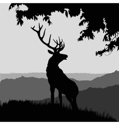 monotonic of an elk vector image