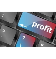Profit key showing returns for internet businesses vector
