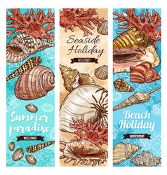 summer travel beach vector image