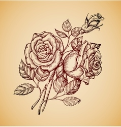 Vintage flowers Hand drawn retro sketch flower vector image