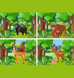 four forest scene with wild animals vector image