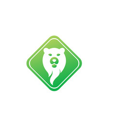 bear head and face for logo design in shape vector image