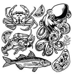 drawing vintage animal set fish crab octopus vector image