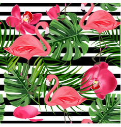 Flamingo seamless pattern summer tropical vector