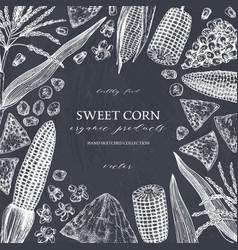 Hand drawn corn design on chalkboard food vector