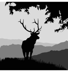 Monotonic of an elk vector