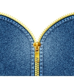Zipper open on denim texture vector image