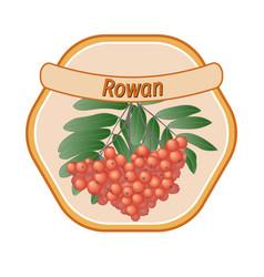 rowan label vector image