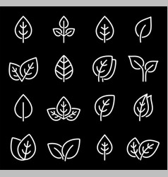 Set white isolated line leaf icons vector