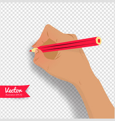 top view of female hand vector image