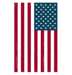 Us flag icons vector