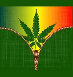 Zipper cannabis leaf vector