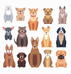 different kinds of dog breeds on white background vector image