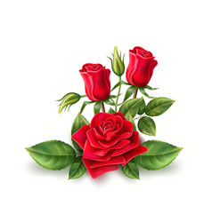 3d realistic red rose elegant bouquet vector