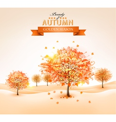 Autumn background with colorful leaves and trees vector image