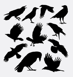 Crow bird poultry animal silhouette vector