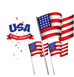 usa national celebration poster template design vector image