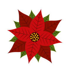 Christmas poinsettia flower and leaves decoration vector
