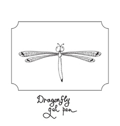 drawing dragonfly vector image