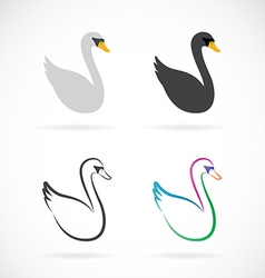 Image of swan design on white background vector