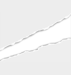 ripped long hole in sheet of white paper vector image