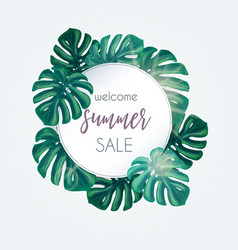 summer sale tropical background vector image