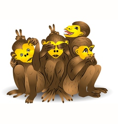 Three monkey vector image
