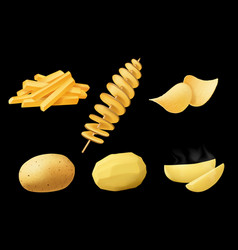 tornado potato chips and french fries vector image