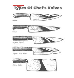 Types kitchen knives vector