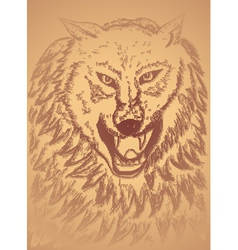 Abstract Wolf Sketch3 vector image