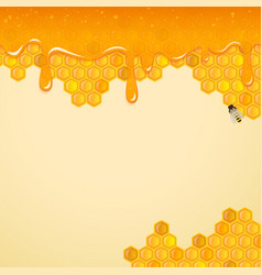 background with honeycombs and bee vector image