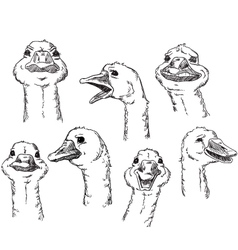 goose with different facial expressions a huma vector image