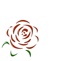rose red flower on white background vector image