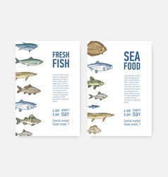 set flyer or poster templates with fish and vector image