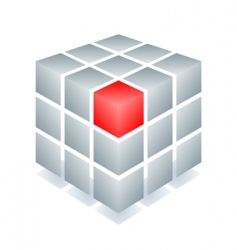 cube with one red block vector image vector image