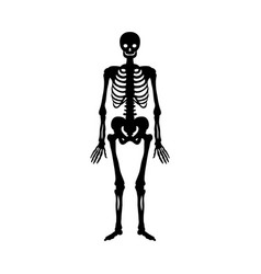 skeleton silhouette ancient monster fantasy vector image