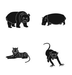 bamboo bear hippopotamus wild animal tiger vector image