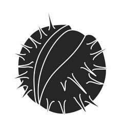 Chestnut iconblack icon isolated on vector