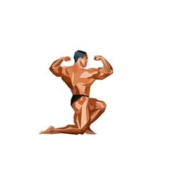 Colored posing bodybuilder silhouette vector image