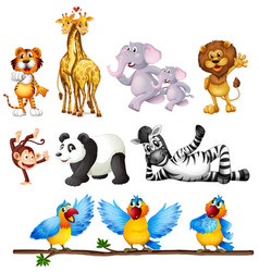 set wildlide character vector image