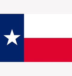 Texan state flag vector