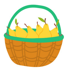 basket with yellow pear isolated juicy fruits vector image