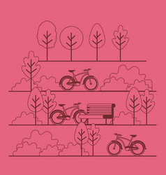 park scene with chair and bicycle vector image