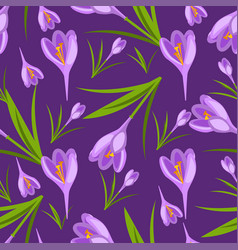 Purple crocuses in the snow pattern vector
